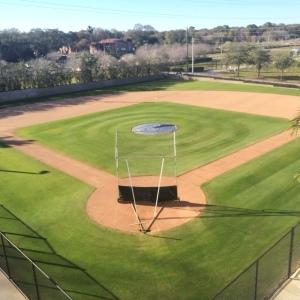 half field