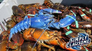 blue-claws